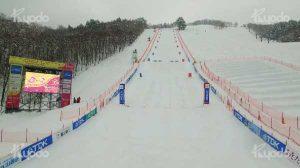 2017 FIS フリースタイルスキーワールドカップ秋田たざわ湖大会